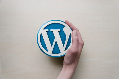 Hand pushing WordPress logo aside