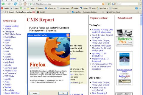 Screenshot of CMSReport.com in Firefox 2 RC1