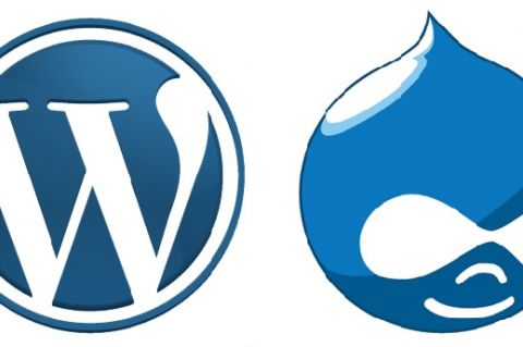 WordPress and Drupal Icons