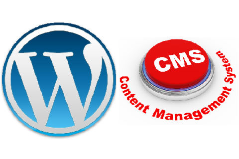 WordPress and Content Management System
