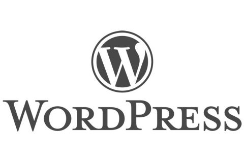 WordPress Logo Source: https://wordpress.org/about/logos/